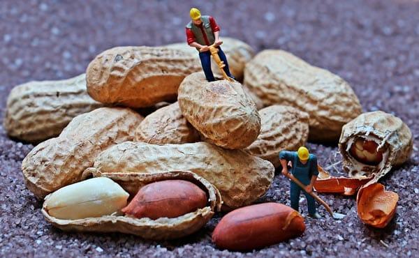 alergia frutos secos ninos