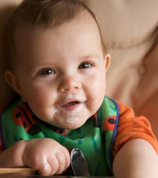 Alimentacion bebes