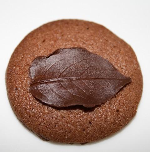 Galletas de chocolate con hojas de rosal