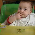 Legumbres para bebés, cómo introducirlas
