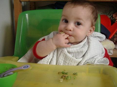 legumbres bebe 1 año