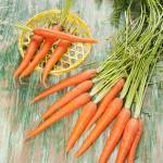 Los betacarotenos