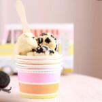 helado-casero-de-vainilla