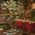 Plantas aromáticas: cómo secarlas en casa