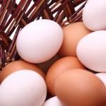 Recetas sencillas: 5 maneras de cocinar los huevos