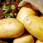 Patata, beneficios y propiedades