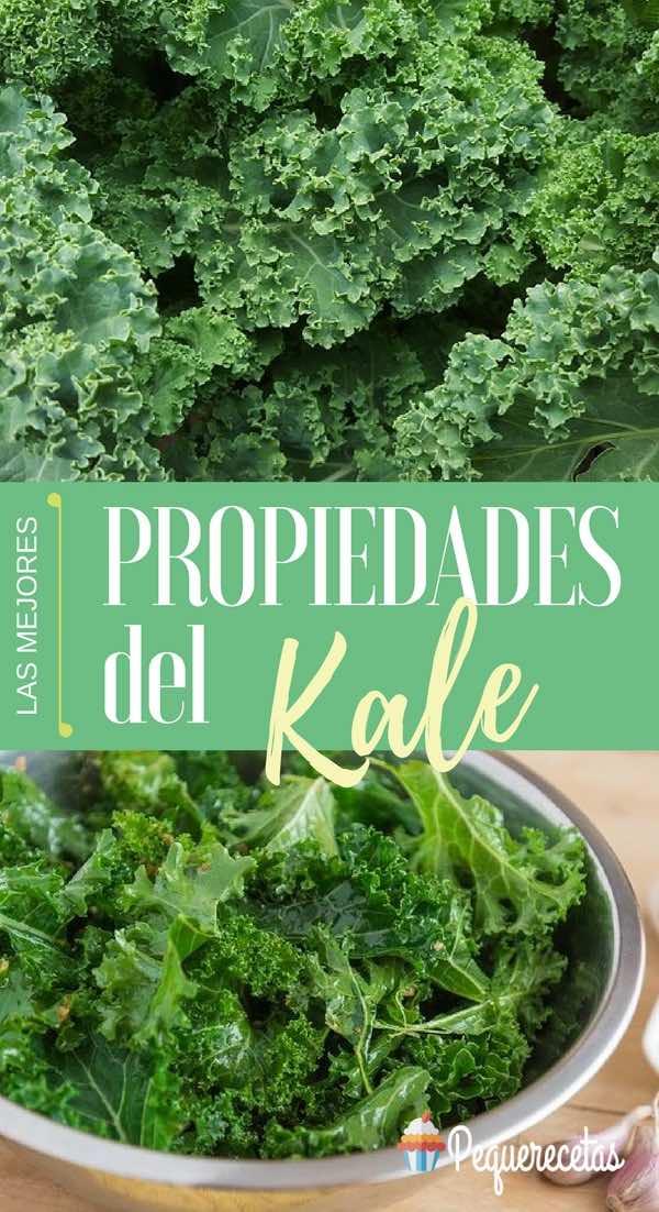 Kale, col rizada o verza