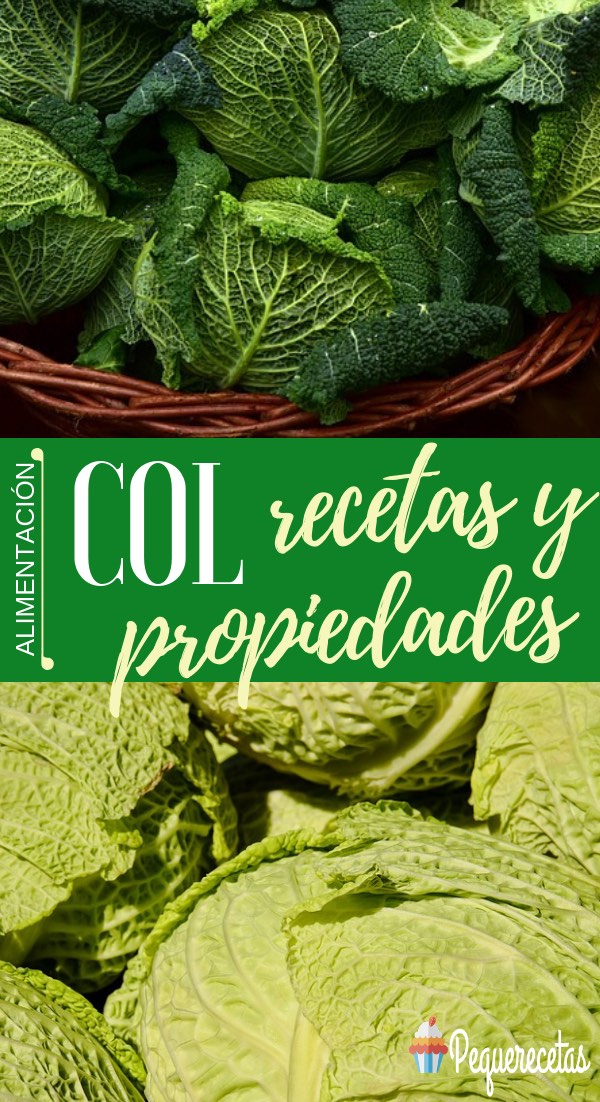 beneficios de la col